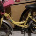 Bicicletta da bimba
